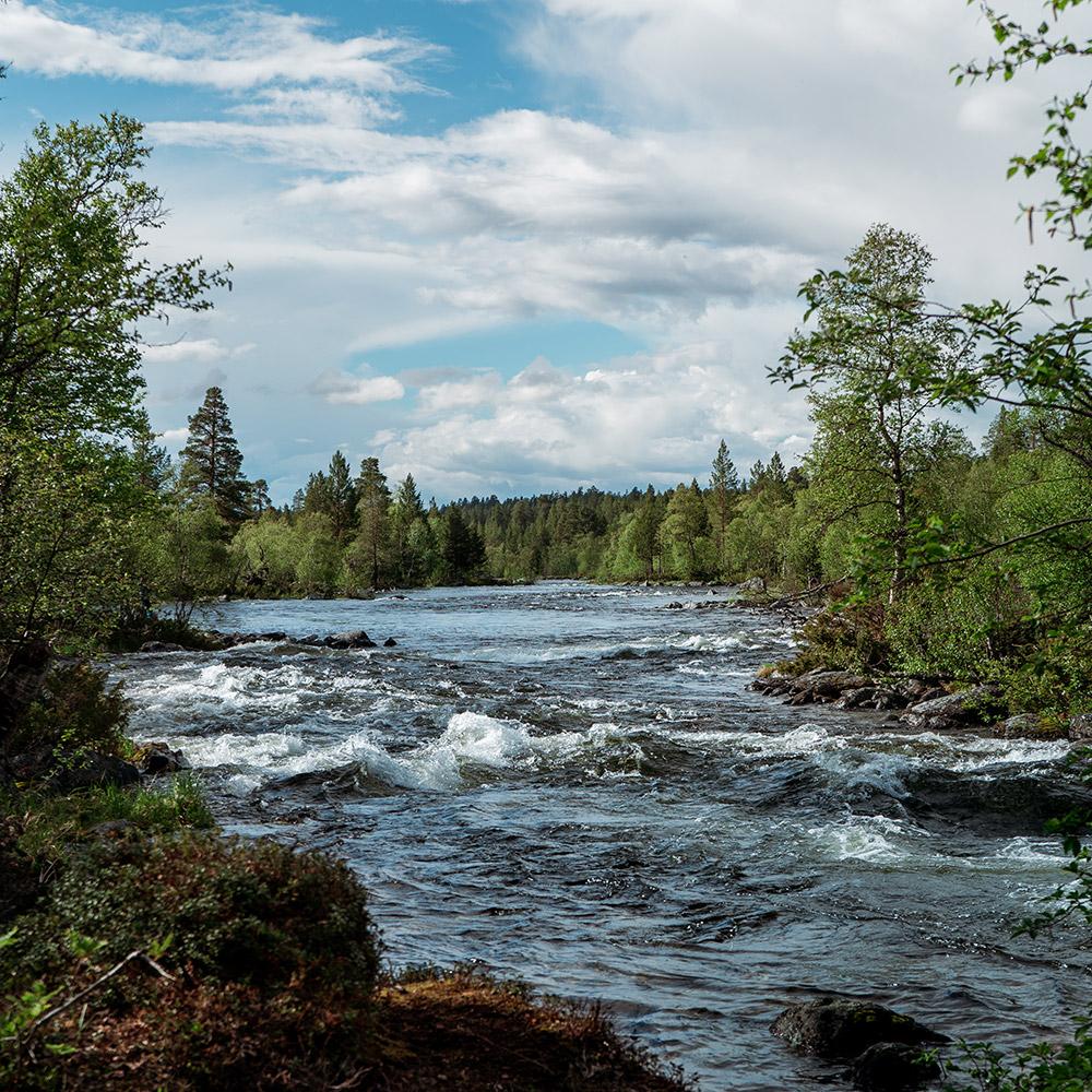 Femundsmarka Nationalpark Norwegen